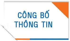 Báo cáo tình hình quản trị năm 2020 Tổng công ty Thăng long -CTCP