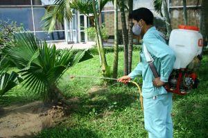 Bảng giá duy trì chăm sóc cây xanh