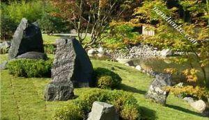Bí quyết tăng cường năng lượng cho sân vườn biệt thự