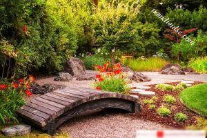 Cách bố trí cầu đi trong thiết kế sân vườn