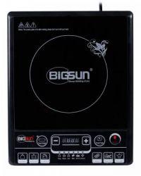 Bếp từ Bigsun BI-1