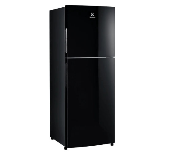 Tủ lạnh Electrolux ETB2802J-H Inverter 256L