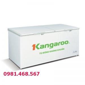 Tủ đông kháng khuẩn Kangaroo KG1009C1