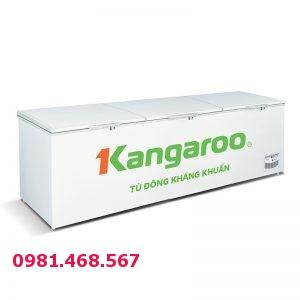 Tủ đông kháng khuẩn Kangaroo KG1400A1