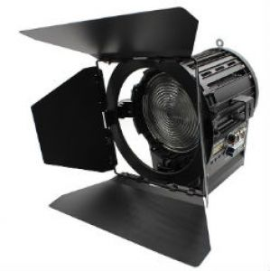 Spot Light FS-LED100WDA