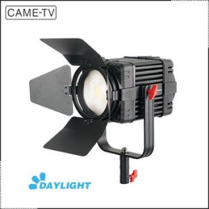 LED Fresnel light DY-100 Daylight