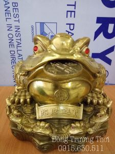 Cóc thần tài - chất liệu đồng vàng