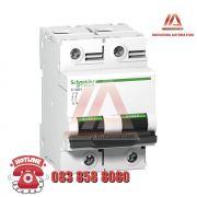 MCB C120N 2P 80A A9N18361