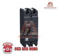 MCCB TYPE H 2P 20A EZC100H2020
