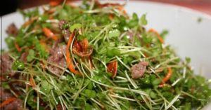 Salat mầm cải bò Mỹ