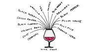 12 Thông TIn Bổ Ích Về Rượu Vang