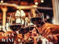 Mùa Tết tri ân, Rượu vang thay lời muốn nói?