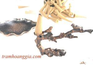 Thác Trầm Cành Hoa MSP: TTH380