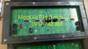 Module P16 3 màu 1 IC
