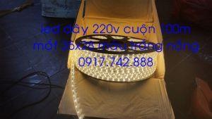 Led dây 35x28 220v màu trắng nắng