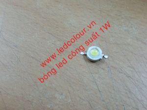 Bóng LED công suất nhân 1W