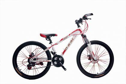 Xe đạp địa hình DKAL DJB24