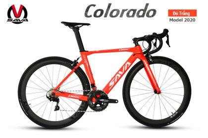 Xe đạp đua Carbon SAVA Colorado