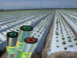 màng che phủ nông nghiệp