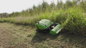 Máy cắt cỏ tự động