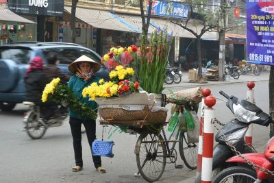 15 DAYS HIGHLIGHTS OF VIETNAM