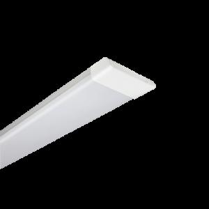 Đèn hộp
