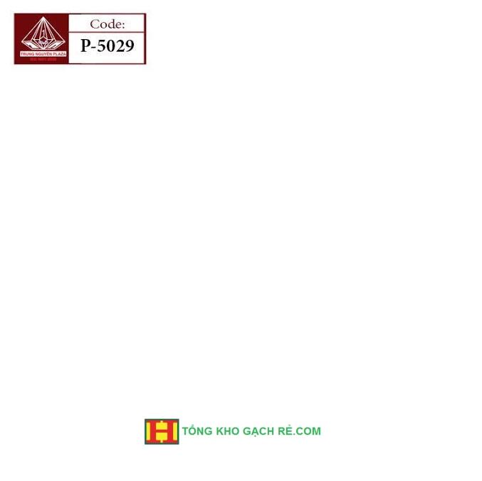 Gạch lát nền 50x50 giá rẻ  5029
