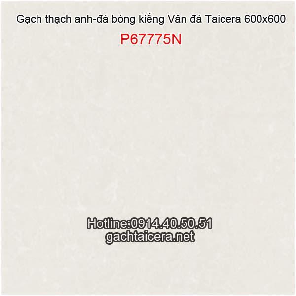 Đá bóng kiếng sale Taicera 60x60 P67775N