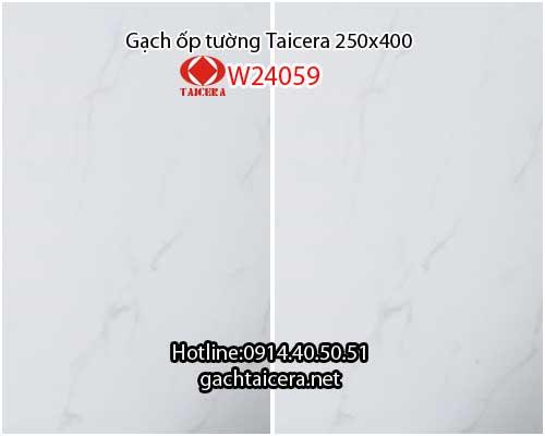 Gạch ốp tường 25x40 Taicera trắng W24059