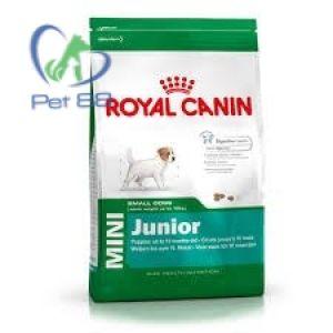 Hạt Canin Mini Junior 800g
