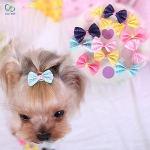 Dây buộc tóc cho thú cưng