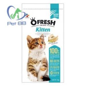 Hạt Ofresh cat care 500g