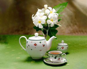 Bộ trà 0.8L - Camellia - Quả Ngọt