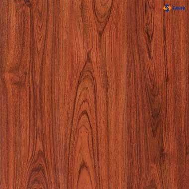 Sàn gỗ chịu nước JANMI T11 (8mm - vân phẳng)