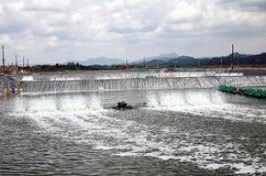 Báo cáo khai thác nước dưới đất định kỳ
