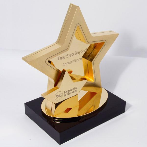 Kỷ niệm chương ngôi sao