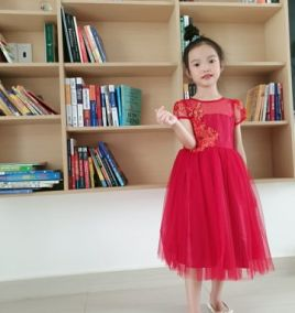 Đầm xòe công chúa cho bé gái ( size lớn )