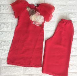 Áo dài lụa đính bông( size trung)
