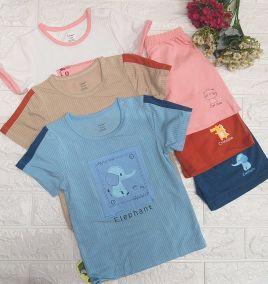 Bộ Thun cotton cộc tay hoạt hình cho bé thương hiệu DOKMA