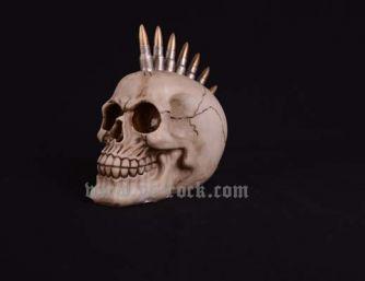 Đầu lâu xương sọ