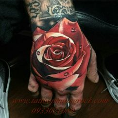 hình xăm hoa hồng