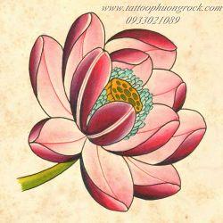 hình xăm hoa sen 12