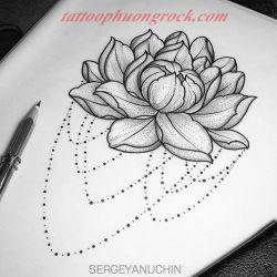 hinh xam hoa tia 22