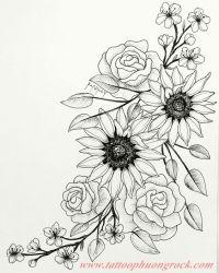 hinh xam hoa tia 30