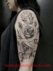 hinh xam hoa tia 13
