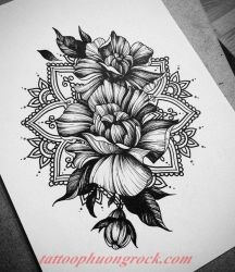 hinh xam hoa tia 33