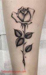 Hinh xam hoa hong 3