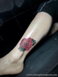 hình xăm hoa hồng nhỏ