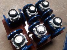 Đồng hồ nước Sensus DN65 - Phi 74 - 65A