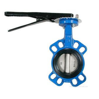 Butterfly valve rubber seat